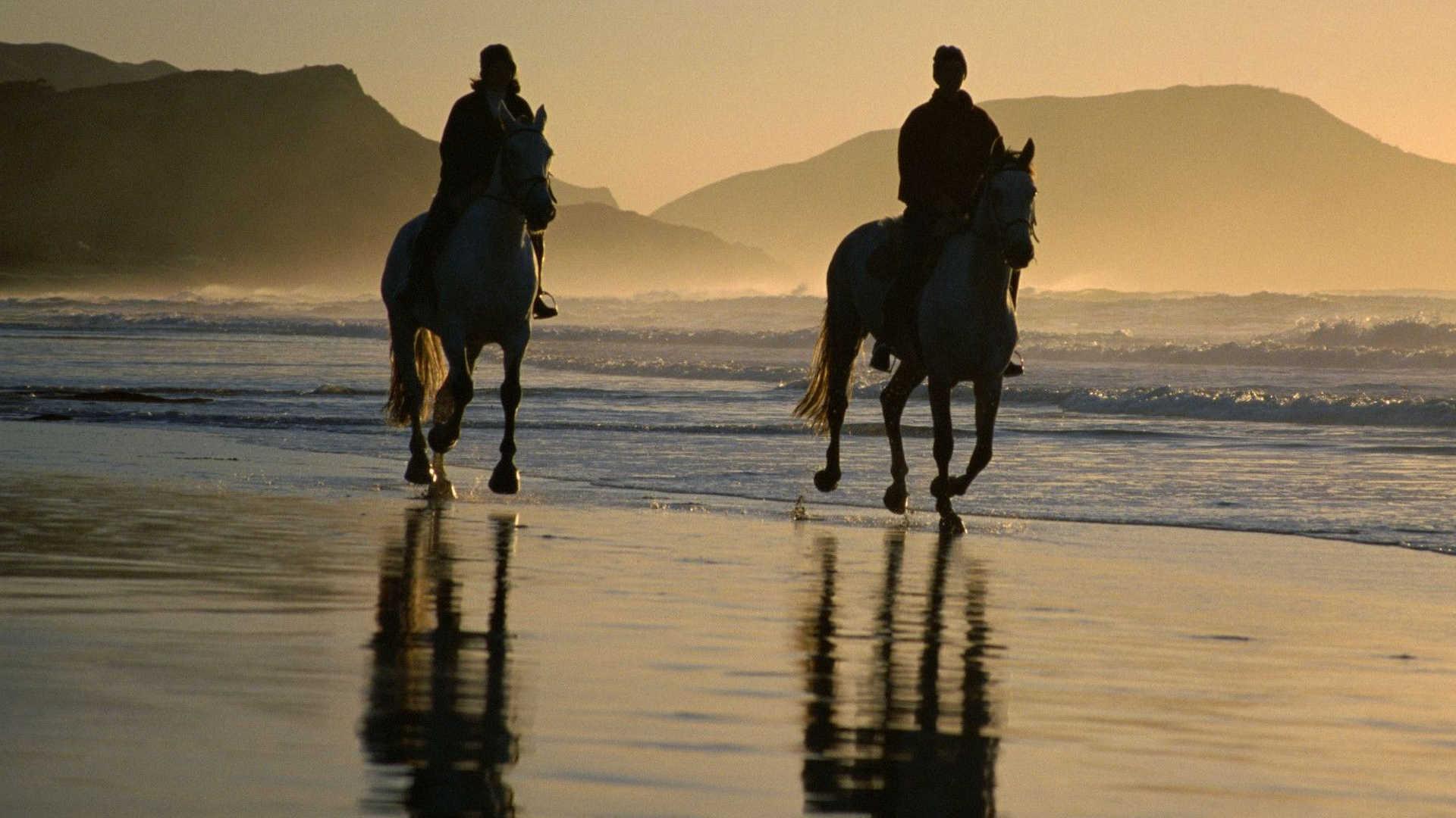 http://louladakis-apts.gr/wp-content/uploads/2016/05/louladakis_activities_horse_riding.jpg